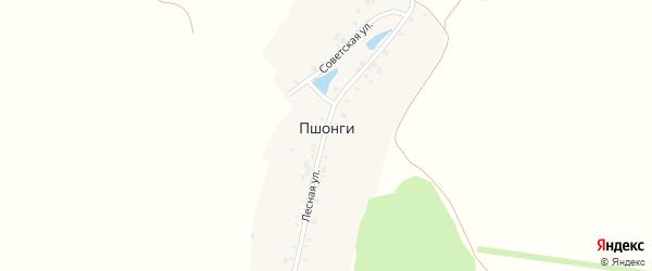 Лесная улица на карте деревни Пшонги с номерами домов