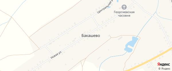 Новая улица на карте деревни Бакашево с номерами домов
