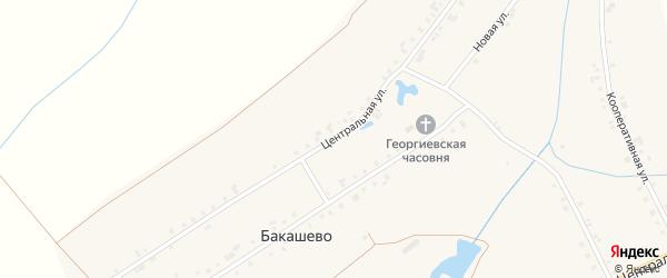 Центральная улица на карте деревни Бакашево с номерами домов