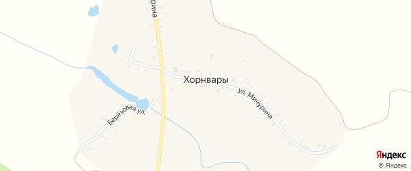 Улица Мичурина на карте деревни Хорнвары с номерами домов