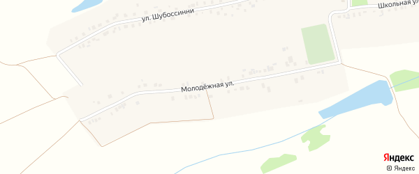 Молодежная улица на карте села Икково с номерами домов