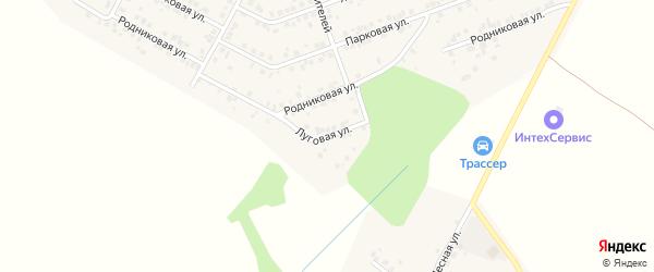 Луговая улица на карте деревни Сятракасы (Лапсарского с/п) с номерами домов