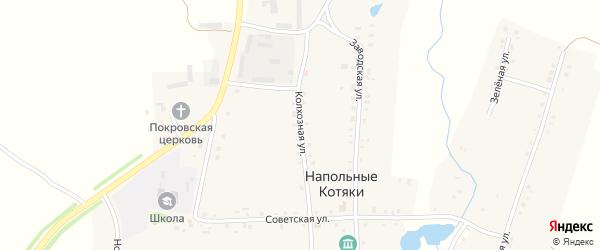 Колхозная улица на карте деревни Напольные Котяки с номерами домов