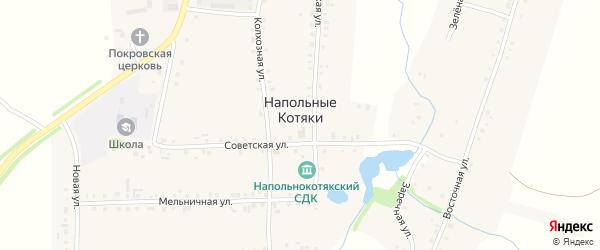 Южная улица на карте деревни Напольные Котяки с номерами домов
