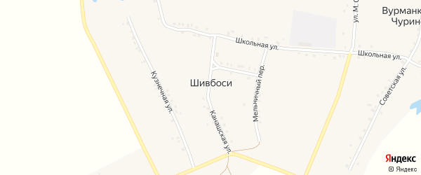 Улица В.Васькина на карте деревни Шивбосей с номерами домов