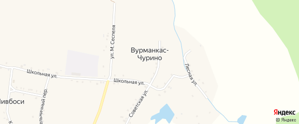 Лесная улица на карте деревни Вурманкас-Чурино с номерами домов