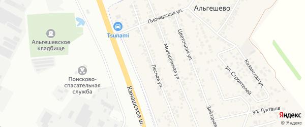 Лесная улица на карте села Альгешево с номерами домов