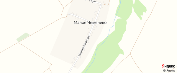 Центральная улица на карте деревни Малое Чеменево с номерами домов