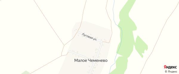 Луговая улица на карте деревни Малое Чеменево с номерами домов