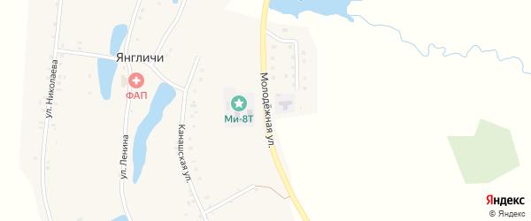 Молодежная улица на карте села Янгличи с номерами домов