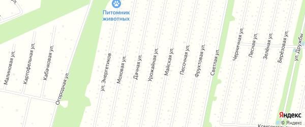 Урожайная улица на карте садового некоммерческого товарищества СОТ Двинские Зори с номерами домов