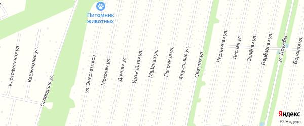 Майская улица на карте садового некоммерческого товарищества СОТ Двинские Зори с номерами домов