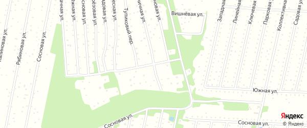 Черничная улица на карте садового некоммерческого товарищества СОТ Двинские Зори с номерами домов