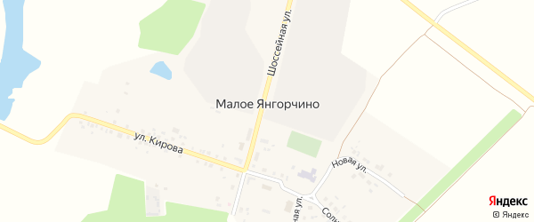 Шоссейная улица на карте деревни Малое Янгорчино с номерами домов