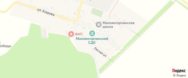 Лесная улица на карте деревни Малое Янгорчино с номерами домов