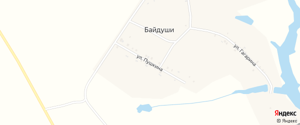 Улица Пушкина на карте деревни Байдуши с номерами домов