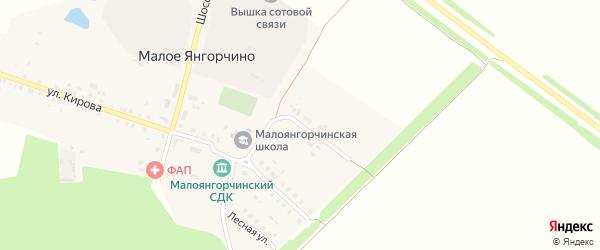 Новая улица на карте деревни Малое Янгорчино с номерами домов