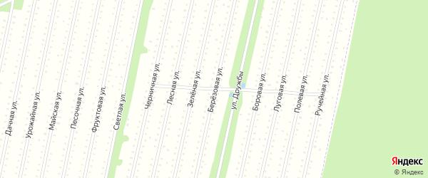 Березовая улица на карте садового некоммерческого товарищества Садоводы Севера сад N6 Колос N2 с номерами домов