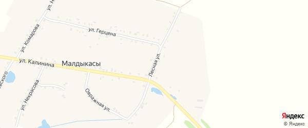Лесная улица на карте деревни Малдыкас с номерами домов