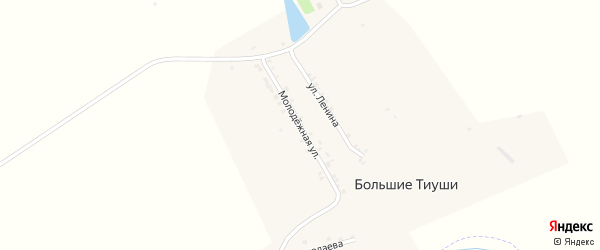 Молодежная улица на карте деревни Большие Тиуши с номерами домов