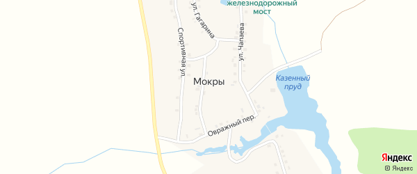 Улица Чапаева на карте деревни Мокры с номерами домов