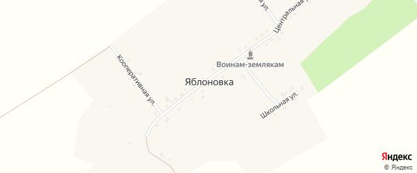 Кооперативная улица на карте деревни Яблоновки с номерами домов