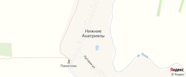Луговая улица на карте деревни Нижние Анатриялы с номерами домов
