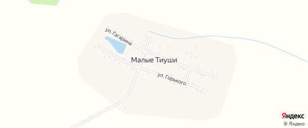 Улица М.Горького на карте деревни Малые Тиуши с номерами домов