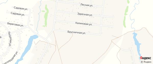 Брусничная улица на карте деревни Устакасы с номерами домов