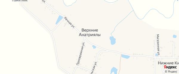 Речная улица на карте деревни Верхние Анатриялы с номерами домов