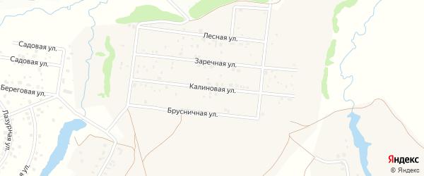 Калиновая улица на карте деревни Устакасы с номерами домов