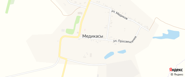 Улица Просвещения на карте деревни Медикас с номерами домов