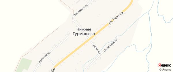 Улица Мира на карте деревни Нижнее Турмышево с номерами домов