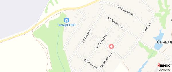 Улица Сеспеля на карте села Синьялы с номерами домов