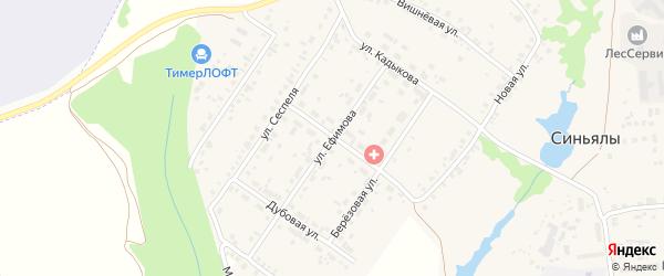 Молодежная улица на карте села Синьялы с номерами домов
