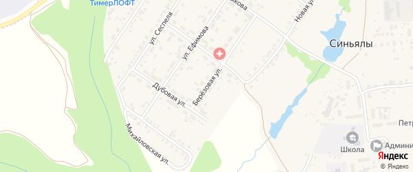 Березовая улица на карте села Синьялы с номерами домов