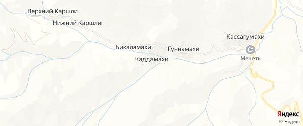 Карта хутора Каддамахи в Дагестане с улицами и номерами домов