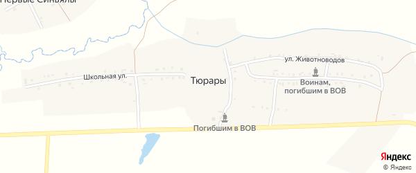 Школьная улица на карте деревни Тюраров с номерами домов