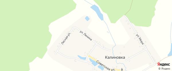 Улица Ленина на карте деревни Калиновки с номерами домов