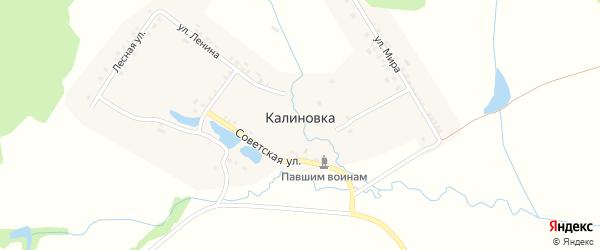 Улица Николаева на карте деревни Калиновки с номерами домов