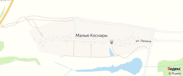 Улица Ленина на карте деревни Малые Коснары с номерами домов