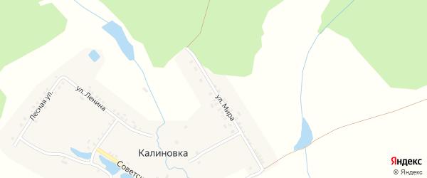 Улица Мира на карте деревни Калиновки с номерами домов