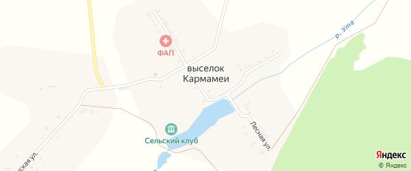 Школьный переулок на карте деревни Кармамеи с номерами домов