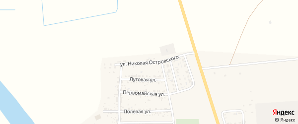Улица Н.Островского на карте села Тамбовки с номерами домов