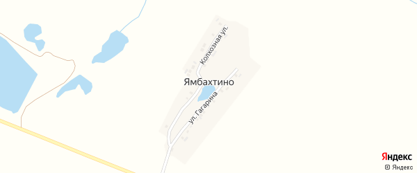 Колхозная улица на карте деревни Ямбахтино с номерами домов