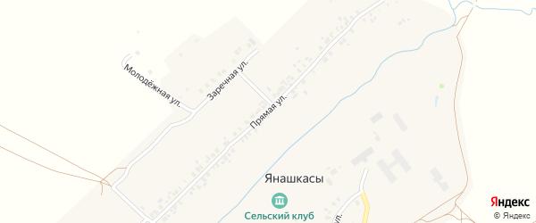 Прямая улица на карте деревни Янашкас с номерами домов