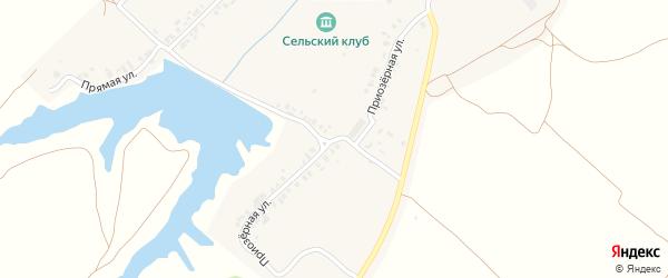 Приозерная улица на карте деревни Янашкас с номерами домов