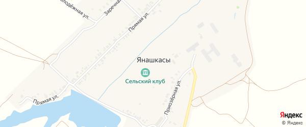 Молодежная улица на карте деревни Янашкас с номерами домов