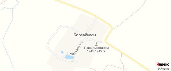 Колхозная улица на карте деревни Борзайкас с номерами домов