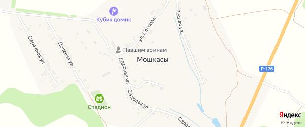 Садовая улица на карте деревни Мошкас с номерами домов